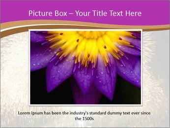 0000081889 PowerPoint Template - Slide 16