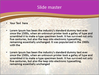 0000081889 PowerPoint Templates - Slide 2