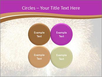 0000081889 PowerPoint Template - Slide 38