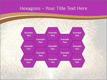 0000081889 PowerPoint Template - Slide 44