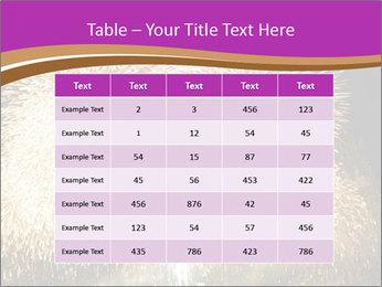 0000081889 PowerPoint Template - Slide 55
