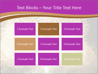 0000081889 PowerPoint Templates - Slide 68