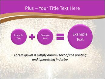 0000081889 PowerPoint Template - Slide 75