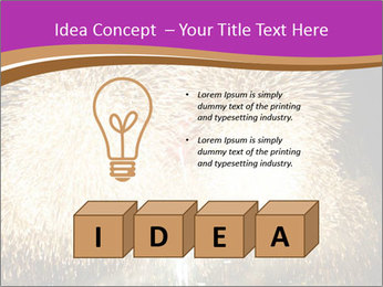 0000081889 PowerPoint Templates - Slide 80