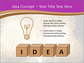0000081889 PowerPoint Template - Slide 80