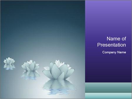 0000081899 PowerPoint Templates
