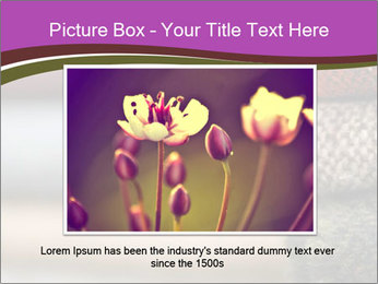 0000081901 PowerPoint Template - Slide 16