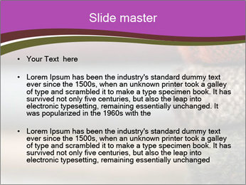 0000081901 PowerPoint Template - Slide 2