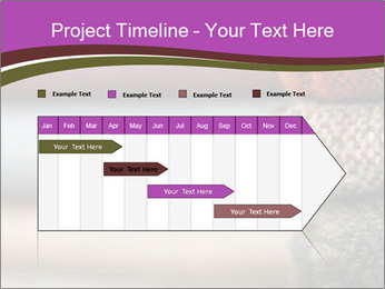 0000081901 PowerPoint Template - Slide 25