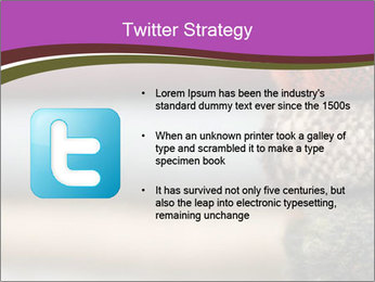 0000081901 PowerPoint Template - Slide 9