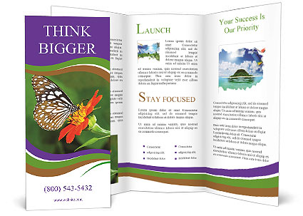 0000081903 Brochure Templates