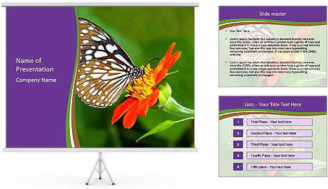 0000081903 PowerPoint Template