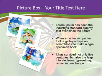 0000081903 PowerPoint Template - Slide 17