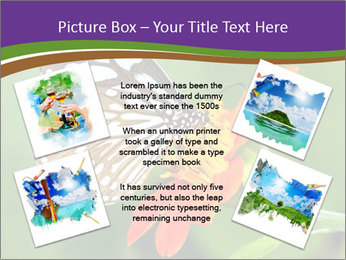 0000081903 PowerPoint Templates - Slide 24