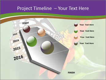 0000081903 PowerPoint Template - Slide 26