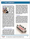 0000081905 Word Template - Page 3