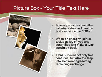 0000081906 PowerPoint Templates - Slide 17