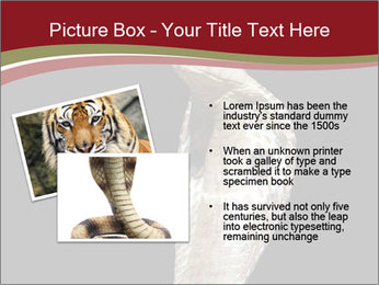 0000081906 PowerPoint Templates - Slide 20