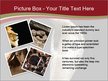 0000081906 PowerPoint Templates - Slide 23