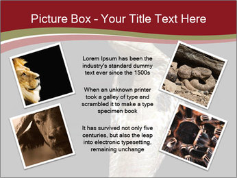 0000081906 PowerPoint Templates - Slide 24