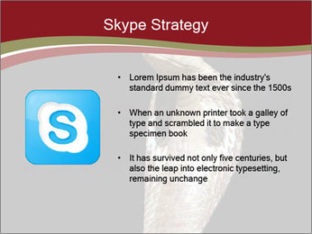 0000081906 PowerPoint Templates - Slide 8