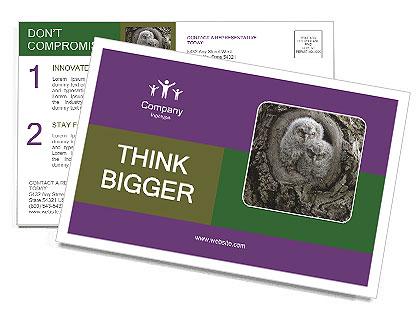 0000081909 Postcard Template