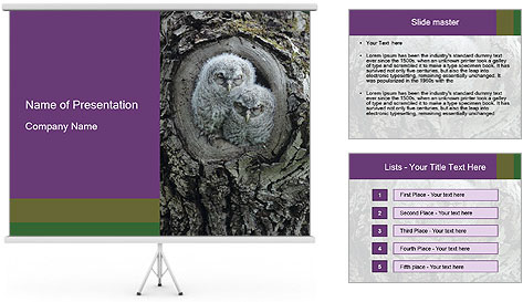 0000081909 PowerPoint Template