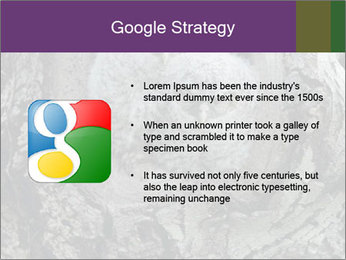0000081909 PowerPoint Template - Slide 10