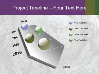 0000081909 PowerPoint Template - Slide 26