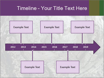 0000081909 PowerPoint Templates - Slide 28