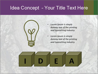 0000081909 PowerPoint Template - Slide 80