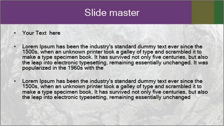 0000081909 PowerPoint Template - Slide 2