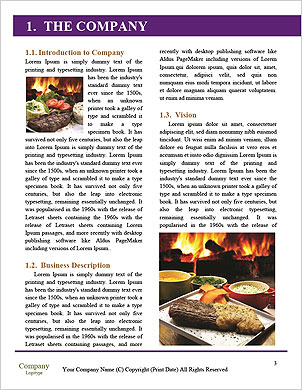 0000081915 Word Template - Page 3