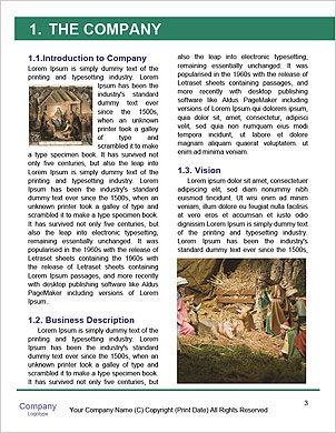 0000081918 Word Template - Page 3