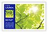 0000081922 Postcard Template