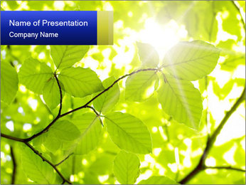 0000081922 PowerPoint Templates - Slide 1