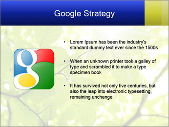 0000081922 PowerPoint Templates - Slide 10
