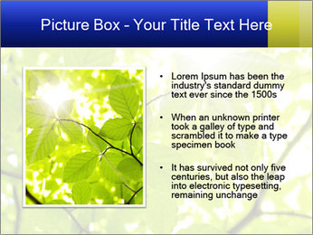 0000081922 PowerPoint Templates - Slide 13