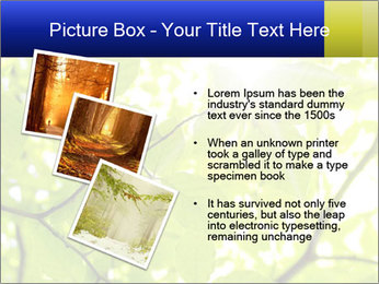 0000081922 PowerPoint Templates - Slide 17