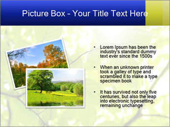0000081922 PowerPoint Template - Slide 20