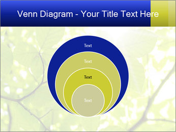 0000081922 PowerPoint Templates - Slide 34