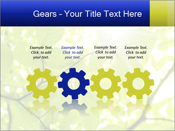 0000081922 PowerPoint Templates - Slide 48