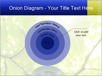 0000081922 PowerPoint Templates - Slide 61