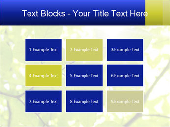 0000081922 PowerPoint Templates - Slide 68