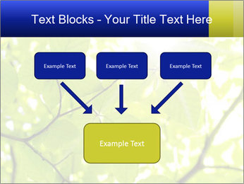 0000081922 PowerPoint Templates - Slide 70