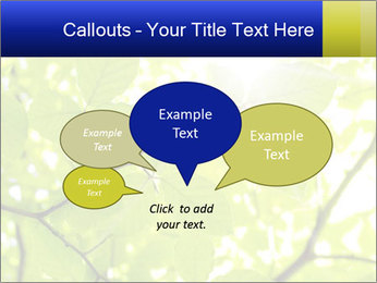 0000081922 PowerPoint Templates - Slide 73