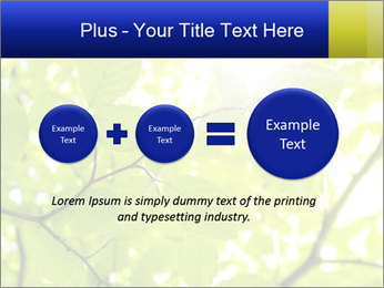 0000081922 PowerPoint Templates - Slide 75