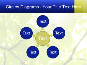 0000081922 PowerPoint Templates - Slide 78