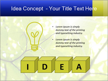 0000081922 PowerPoint Templates - Slide 80