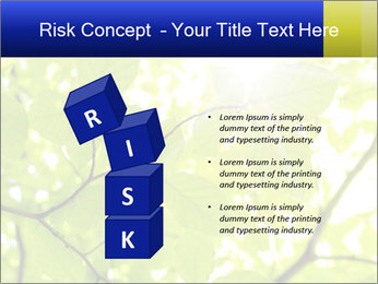 0000081922 PowerPoint Templates - Slide 81